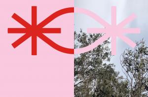 Pinkman + TYPICAL