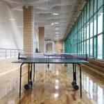 Спорткомплекс Государственного университета управления